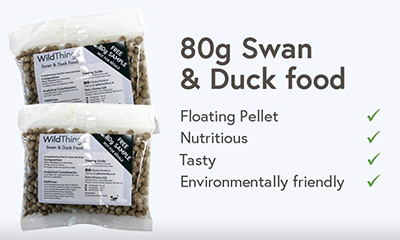 Free Swan & Duck Food