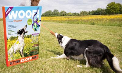 Free Dog Magazine