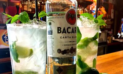 Free Bacardi Cocktail