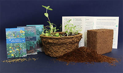 Free Seed Planting Kits