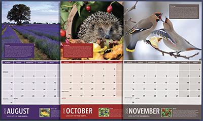Free Wildlife 2020 Calendar