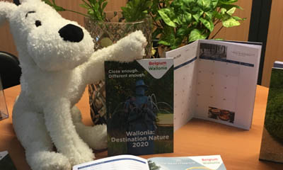 Free 2020 Diary Planner & Soft Toy