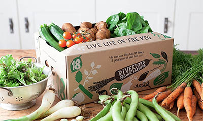 Free Riverford Organic Box