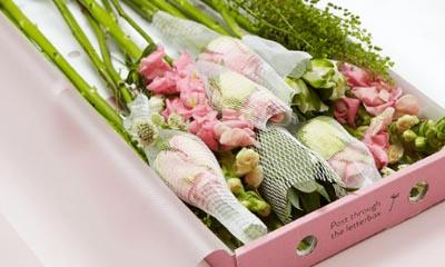 Free Bloom & Wild Flower Bouquets