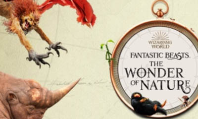 Win Natural History Museum Tickets for Your Class